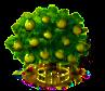 Zimtapfelbaum xxl.png